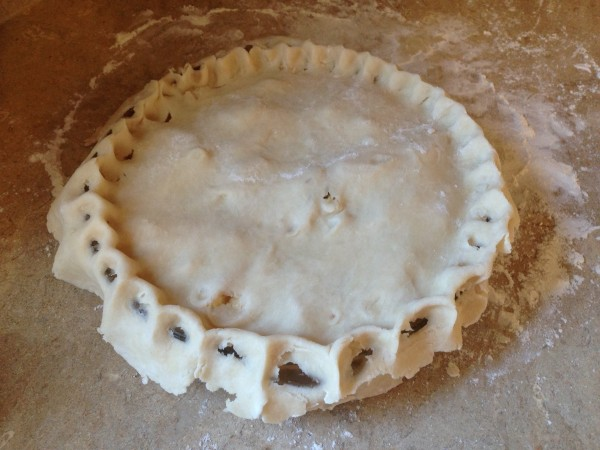 Think pie crust is hard? Nope! Try this easy perfect pie crust recipe with a handy picture guide showing what everything should look like at each step of the way. It's like I'm holding your hand. Don't be scared! | pie recipes | baking ideas | baking desserts