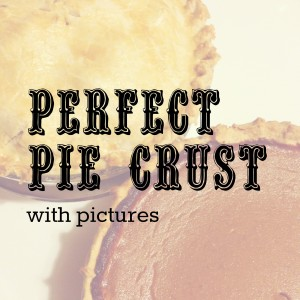 Perfect Pie Crust (with pictures)